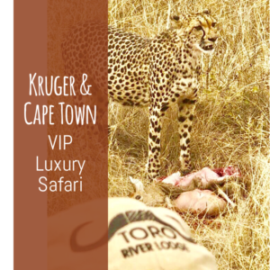 Toro River Lodges | Safari Packages