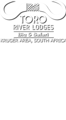 Toro River Lodges | African Dream Safari